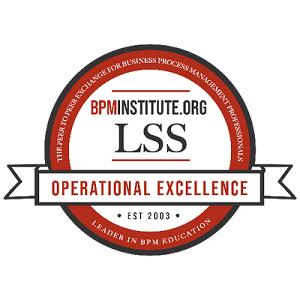 Lean Six Sigma and BPM Badge