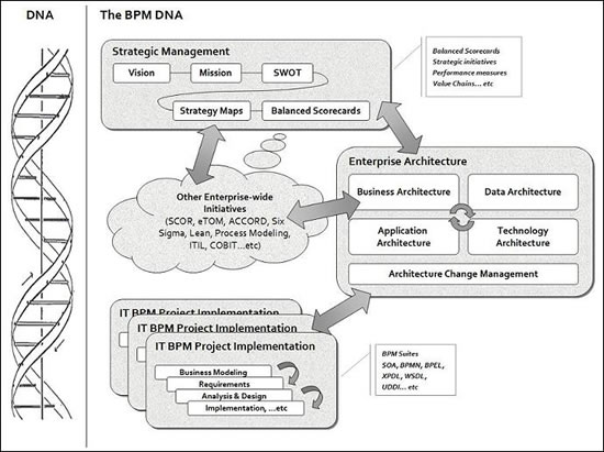 The Business Process Management DNA, a need for the